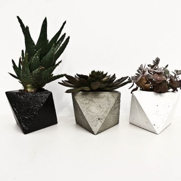 Geometric 'Iris' Concrete Planter - Basic Range - Plain Grey/White/Black