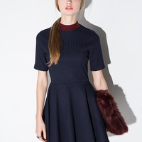 Burgundy Collar Navy Knit Skater Dress