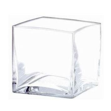 "Clear Glass Square Vase4"" Tall x 4"" Wide"