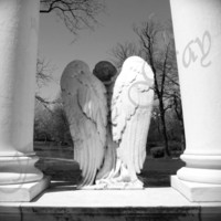 Guardian Angel Cemetary Headstone Graceland Cemetary Chicago