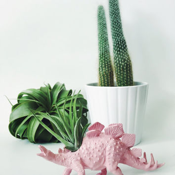 Small Pastel Pink Stegosaurus Dinosaur Planter with Air Plant; Dinosaur Planter; Unique Gift Idea; Home Decor; Desk Accessory; Air Plant