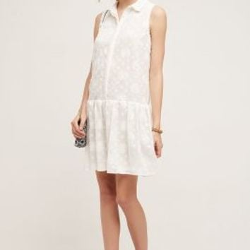 Maeve Dropwaist Shirtdress in Ivory Size: