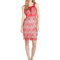 Jax Women's Lace Dress with Contrast Lining and Banding Detail