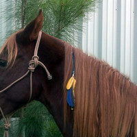 Teal Felted Wool Equine Mane Dangler - Mane Ornament for Horse - Mane Jewelry for Horse