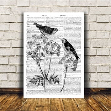Bird art Wall decor Dictionary print Cute poster RTA284