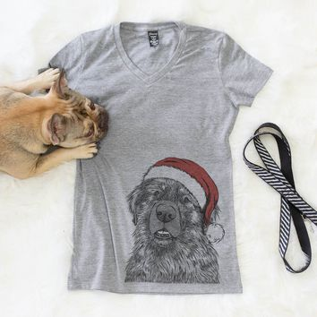 Ralph the Leonberger  - Christmas Collection
