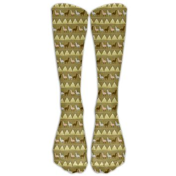 Ancient Pyramid Llama Novelty Cotton Knee High All-Over Printed Socks