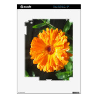 Sunny Calendula Raindrops iPad 2 Decals