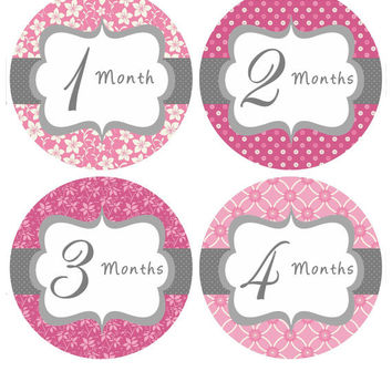Baby Month Stickers Baby Girl Monthly Onesuit Stickers Hot Pink First Year Stickers Month Onesuit Stickers Baby Shower Gift Photo Prop May-R