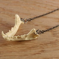 jaw bone necklace - mink jaw on gunmetal