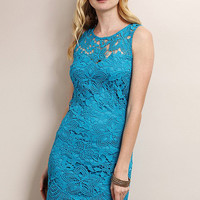 Ocean Blue Butterfly Hem Lace Dress