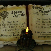 Witch Poison Apple Spell Book Snow White