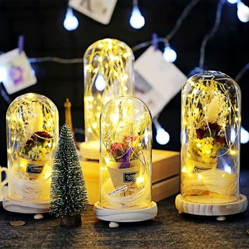 Glass Dome LED Lighting Birthday Christmas Valentine's Gifts Beauty and Beast Dry Flowers Fallen Petals Home Decoration