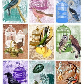birds cage Printable Digital Collage Sheet 2.5x3.5 inch size Gift Tags Jewelry Holders