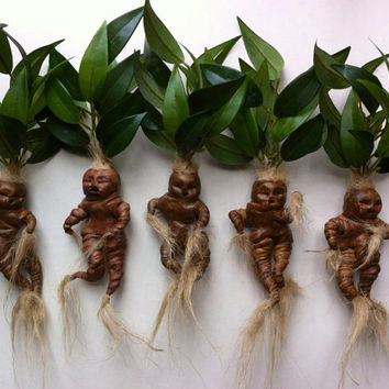 temporary sale mandrake doll mandragora from. Black Bedroom Furniture Sets. Home Design Ideas
