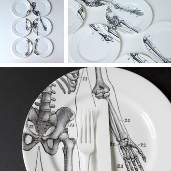 Bone China | Colossal