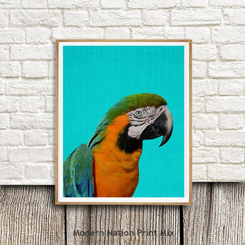 Bird Print, Tropical Print, Parrot, Tropical Decor,Wall Art, Macaw Bird, Printable Art, Colourful Bright, Yellow Blue, Bird Photography gift