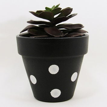 Terracotta Pot, Succulent Planter, Indoor Pot, Succulent Pot, Black Planter, Air Plant Holder, Indoor Planter, Flower Pot, White Dots