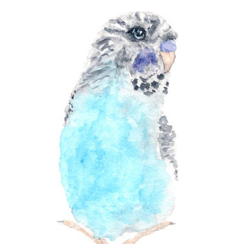 Watercolor bird painting, bird art, watercolor animals, parakeet painting, budgie, blue bird, abstract watercolor, original painting, 5X7
