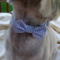 Blue and White Seersucker Check Bow Tie Collar