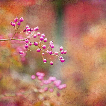 Tie Dyed Berries in Pink Orange and Gold - Fine Art Photo - FREE SHIPPING