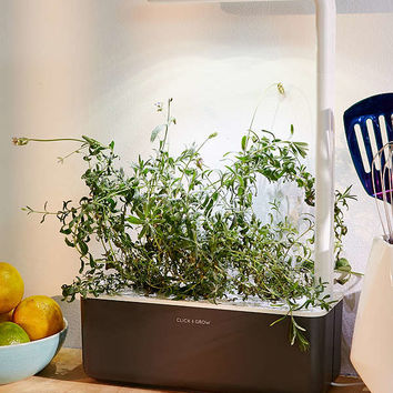 Click & Grow Smart Herb Garden II Starter Kit | Urban Outfitters