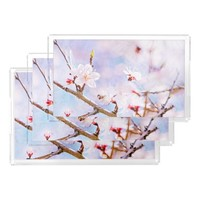 Japanese Cherry - Sakura In Bloom Rectangle Serving Trays