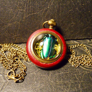 Moss Ball with Green Beetle Wood and Glass Terrarium Orb Bronze Metal LONG Necklace