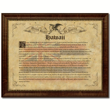 Hawaii Vintage History Flag Canvas Print, Picture Frame Gift Ideas Home Décor Wall Art Decoration