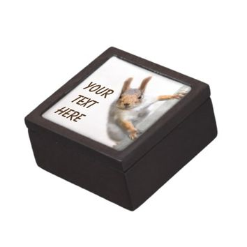 Curious squirrel keepsake box