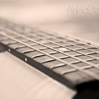 Sepia Guitar Strings - 5 x 7 Photograph