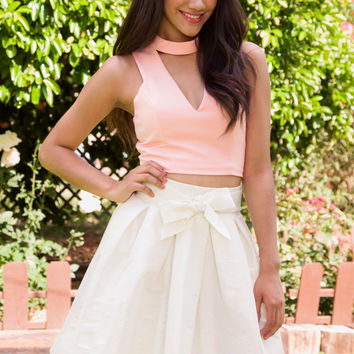 Beautiful Now Skirt - White