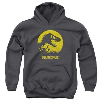 Jurassic Park T Rex Sphere Youth Pullover Hoodie