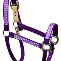 Purple Polka Equine Elite Halter - Made in the USA at RedHauteHorse.com