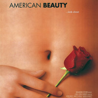 American Beauty 11x17 Movie Poster (1999)