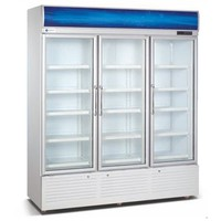 Beverage Refrigerator - 1100 Liters, 3 Doors, Ventilated, R134a, TT-BC295C