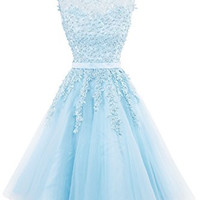 Oyeahbridal Women's Sleeveless Tulle Appliques Short Evening Gowns Prom dresses