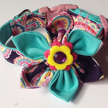 Purple & Aqua Paisley Collar & Flower Set for Girl Dogs and Cats