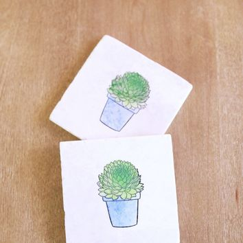 Potted Succulent Marble Coasters