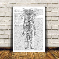 Anatomy art Modern decor Human body poster Dictionary print RTA348