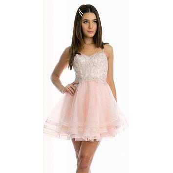 Short Tiered Tulle Homecoming Blush Dress Embroidered Bodice