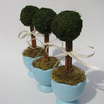 Adorable Moss Topiaries- in blue and white egg cups - wedding decor - springtime home decor
