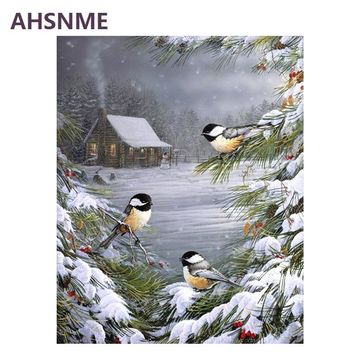 AHSNME Bird Oil Painting By Numbers Kits Wall Art Picture Home Decor Semi-finished Children's drawing learning kit gift