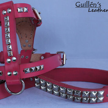 Pink Medium Leather Dog Harness with Pyramid Studs and Matching Leash
