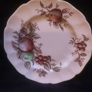 Johnson Bros. Harvest Time Bread and Butter Plate (492)