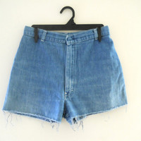High Waist Denim Shorts 70s Shorts High Wasted Shorts Highwaisted Shorts Blue Jean Shorts Denim Short Shorts Cutoff Jean Shorts Denim Shorts