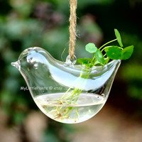 Bird Glass Hanging Vase + optional plant roots