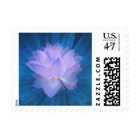 Galaxy Flower Postage