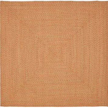 Safavieh Braided BRD166 Area Rug
