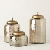 Mercury Moss Canister